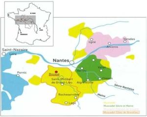 Une situation privilégiée (carte appellations Côtes de Grandlieu) - appellation Muscadet Côtes de Grandlieu - Domaine du Haut Bourg | DOMAINE DU HAUT BOURG